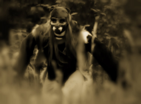 vlkod